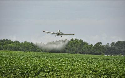 Comunicado contra el retorno de las fumigaciones aeras con glifosato en Colombia